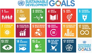 Call for Examples: SDGs Good Practices