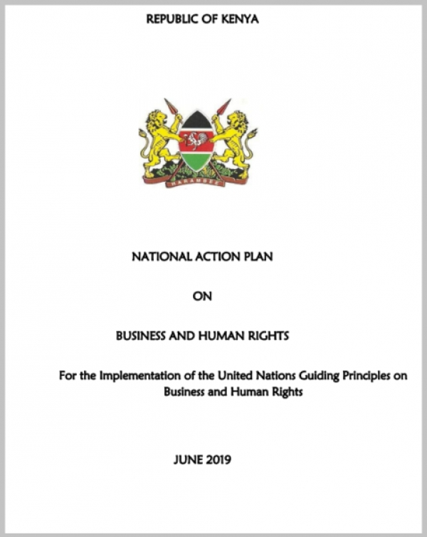 National Action Plan on Business and Human Rights (NAP)